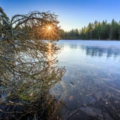 Lever de soleil sur l'étang de la Gruère, JU